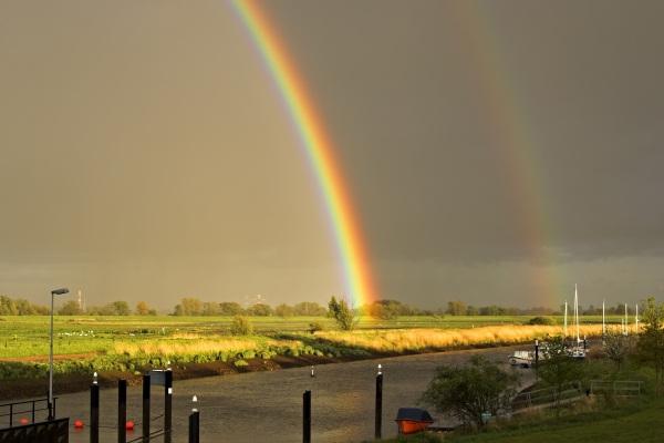 rainbow - 66699