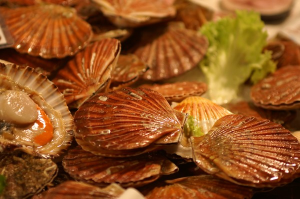 scallops with lettuce leaf