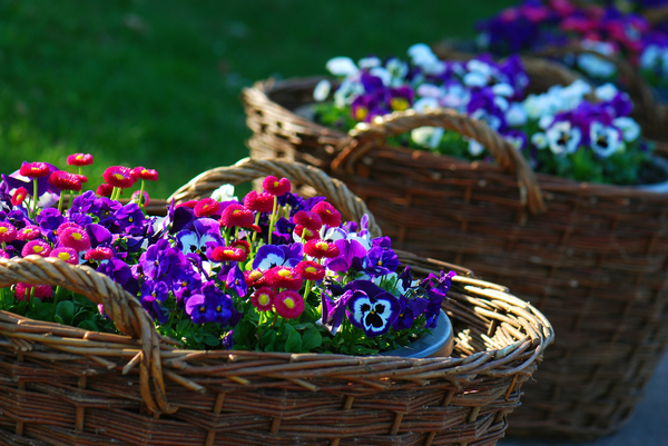 basket of spring flowers
