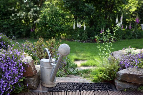 zinc watering can in the garden