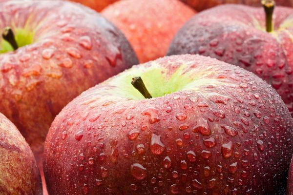 apples, wet........ - 3803391