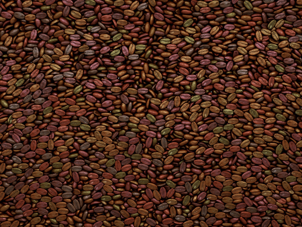 unsorted coffee beans texture or background