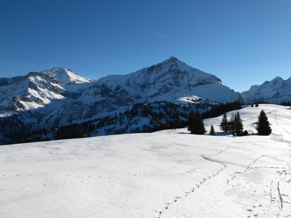 winter in the bernese oberland wispile