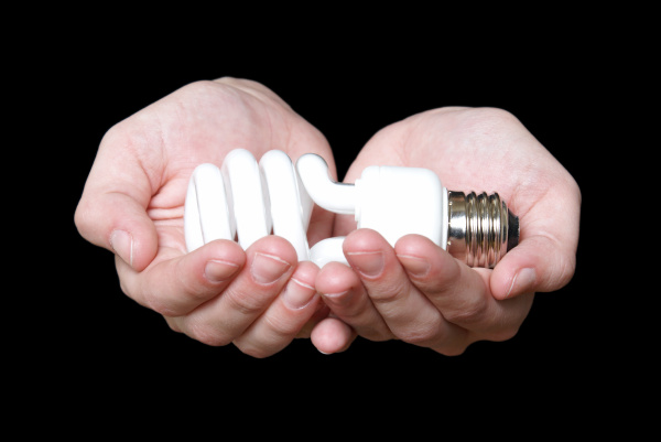 eco friendly light bulb