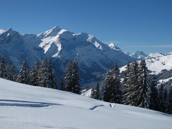 winter scenery near gstaad oldenhorn