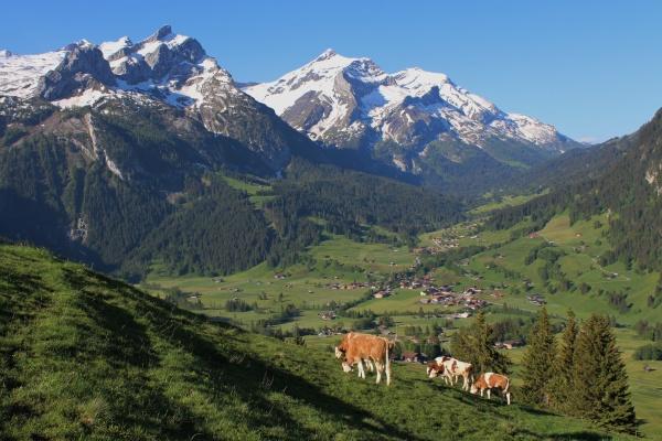 beautiful scenery near gstaad bernese oberland