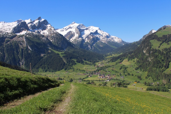 snow capped mountains and green meadow
