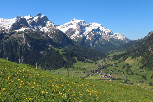 snow, capped, mountains, and, green, meadow - 9545890