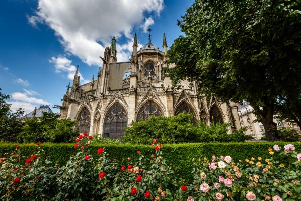 notre dame de paris cathedral with