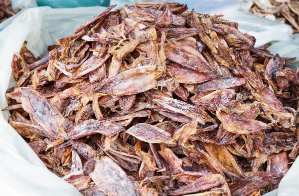 dried squid on food market