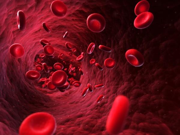 3d rendered illustration blood