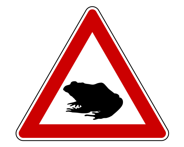 attention toad migration