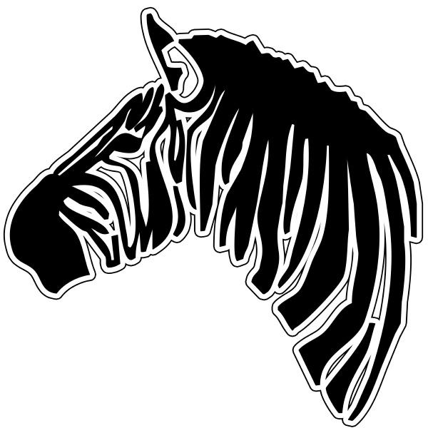 zebra equus burchellii