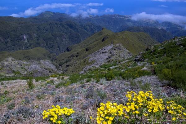 hiking to pico ruivo