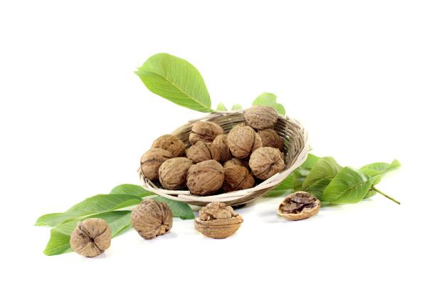 crisp walnuts with walnut leaves in