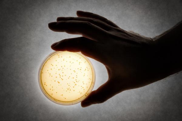 hand with petri dish