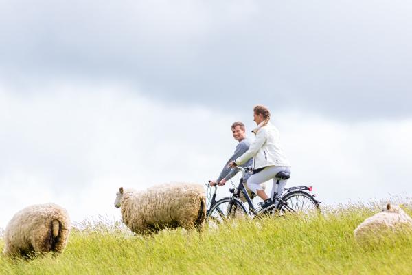 couple on coastal bike ride at