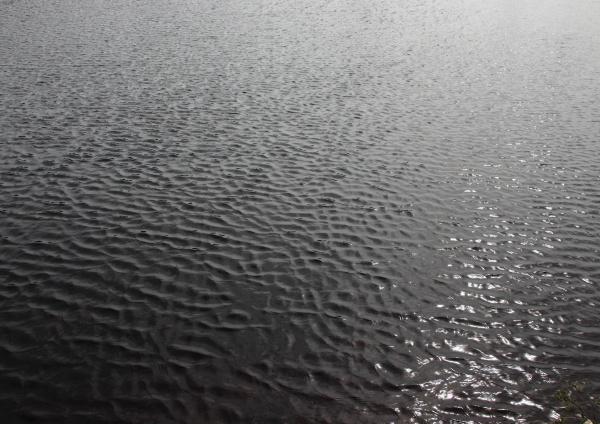 dark lake with water and sun