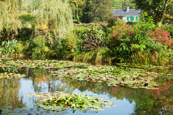 monet s water lily pond in