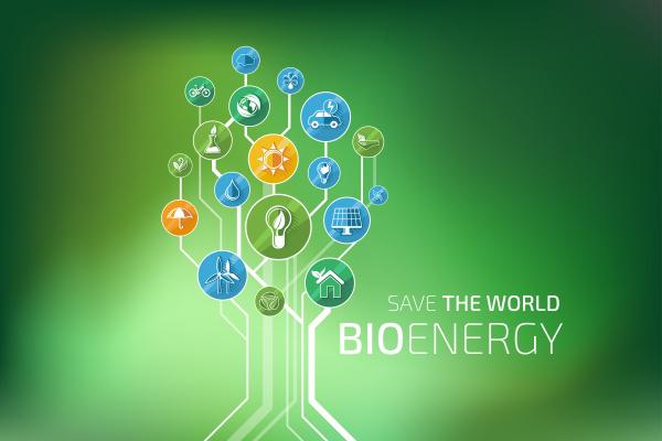ecology infographic bio energy
