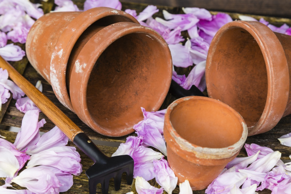 still, life, with, flower, pot - 16321443