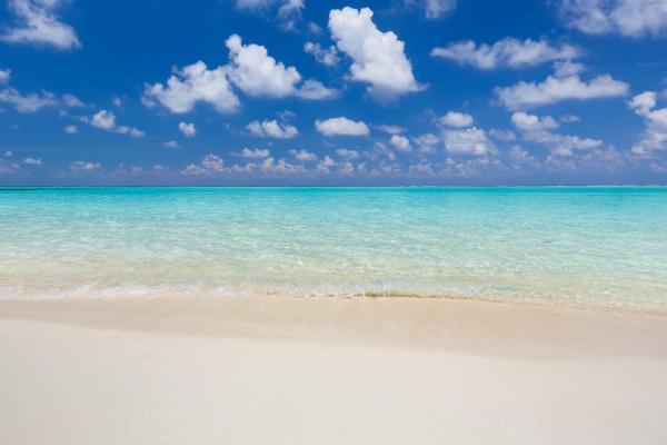 beautiful, ocean, beach - 16344687