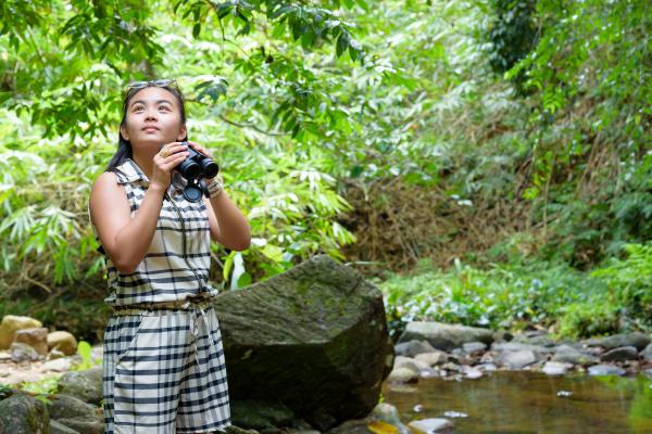 girl, using, binoculars, in, forest - 16356193