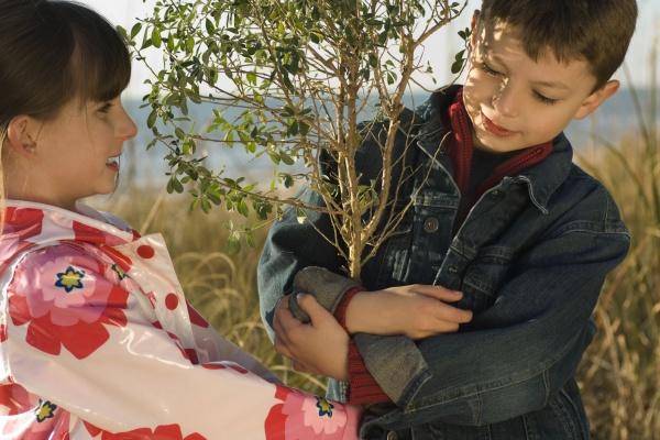 children hugging tree sapling