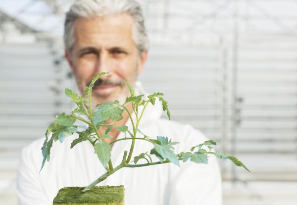 portrait of confident botanist holding tomato