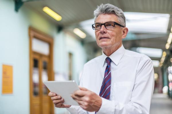 senior businessman holding digital tablet