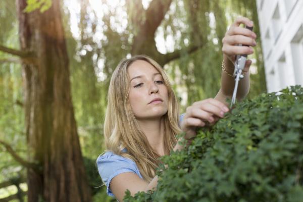 young woman pruning bush in garden