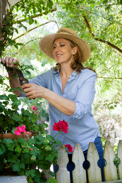 mature woman pruning flowers in garden