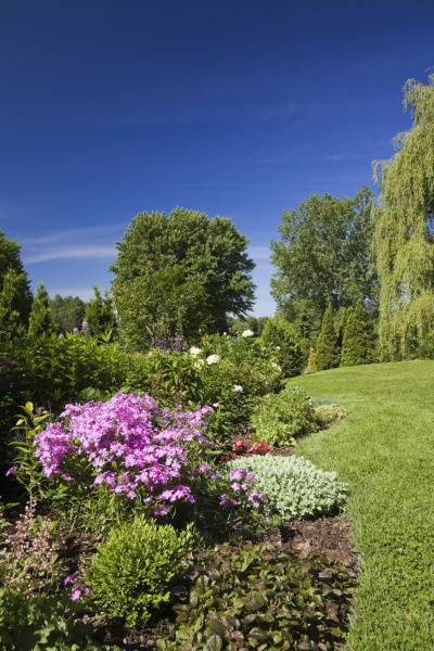 garden lawn with border of various
