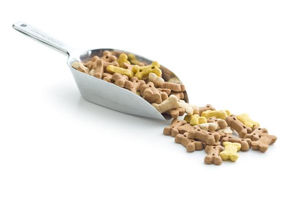 dog food shaped like bones