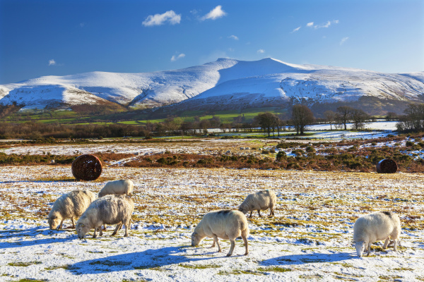 brecon beacons national park wales united