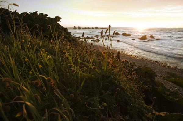 sunset on a remote rocky beach