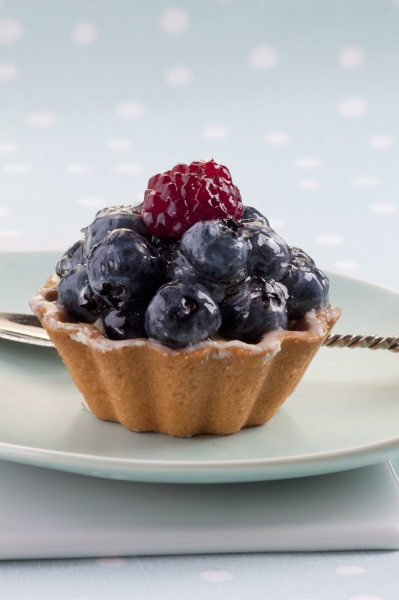 a blueberry tartlet with one raspberry