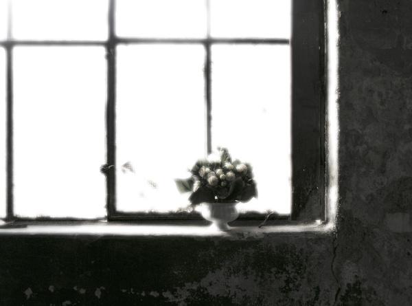 bunch of flowers on window sill