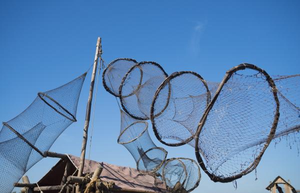 fishing nets for eel