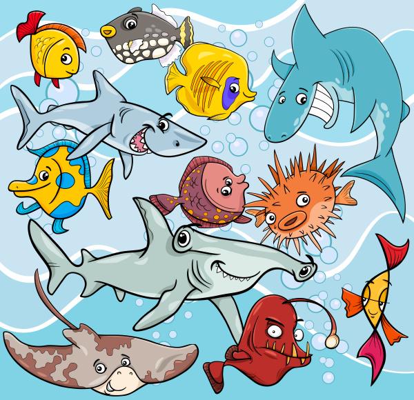 fish cartoon animal characters group