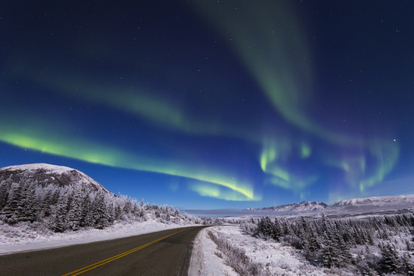 the aurora borealis glows over the