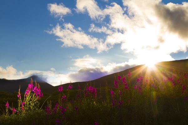 sun peeks over ridgeline and lights