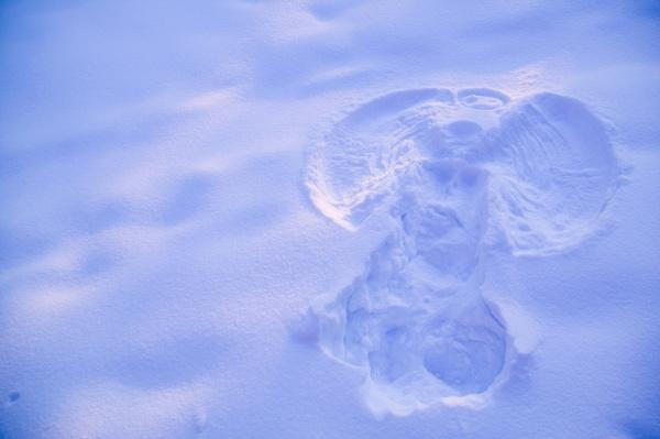 close up of snow angel at