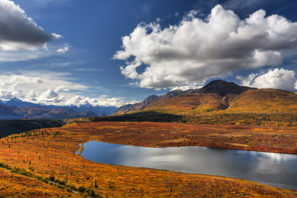 scenic view of fall colors along