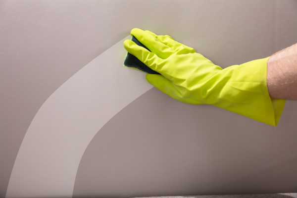 person, cleaning, sofa, with, sponge - 23664006