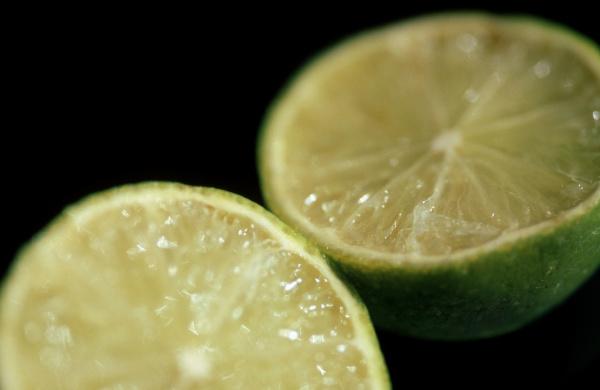 food aliment studio photography progenies fruits