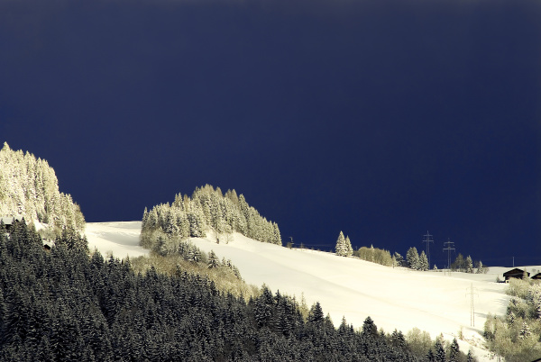 mountains winter austrians snowy woods forest