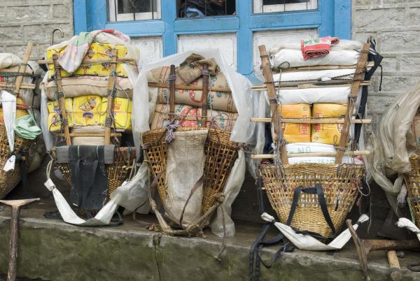 asia third basket transport sale carrier