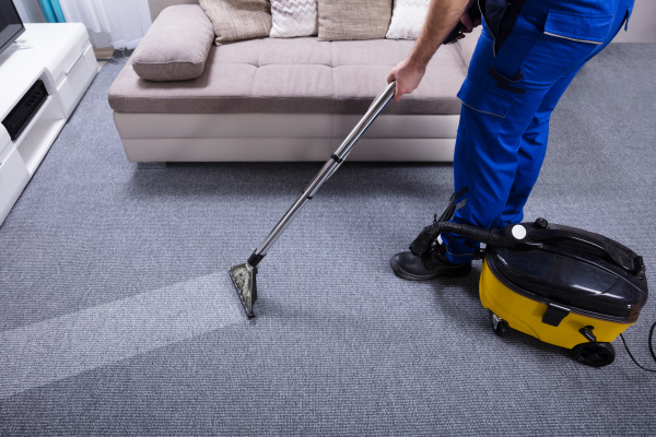 janitor, cleaning, carpet - 24558998