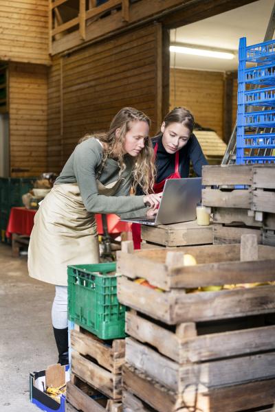 two women using laptop between crates